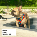 Reversible Dog Harness - Junk Food
