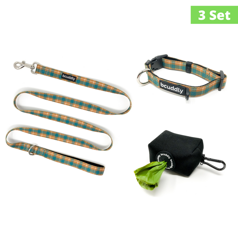 Chill Cheetah (Leash, Harness, Poop Bag Holder)