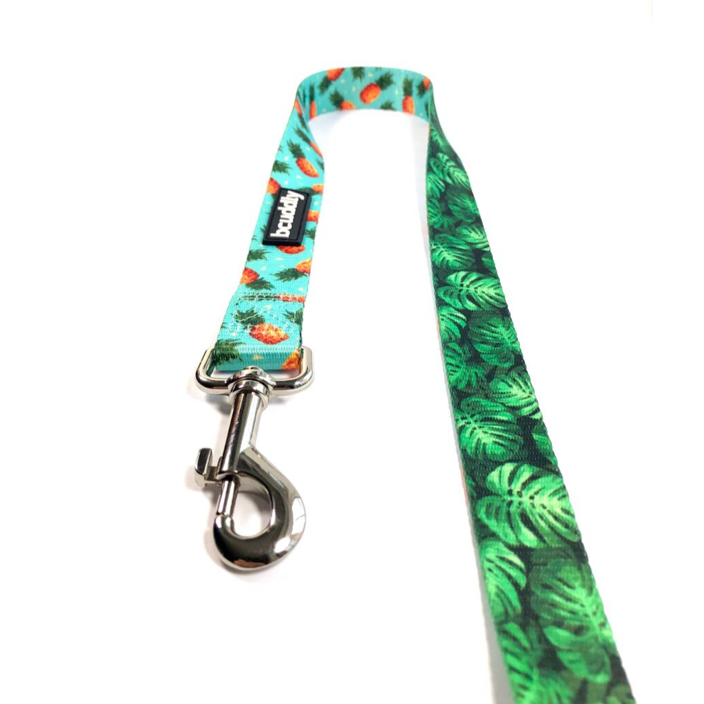 Dog Leash - Pineapples & Leaves (5ft)