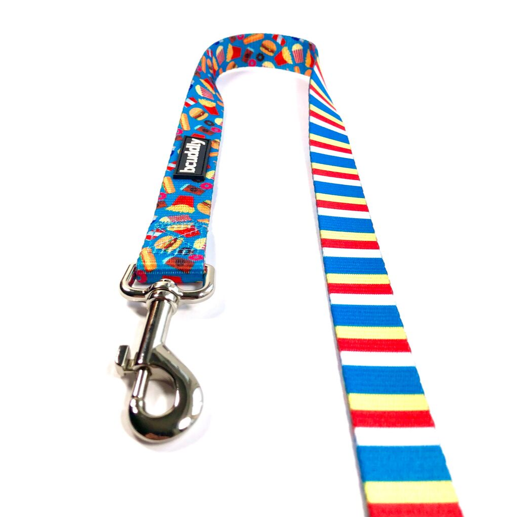 Dog Leash - Food & Stripes (5ft)