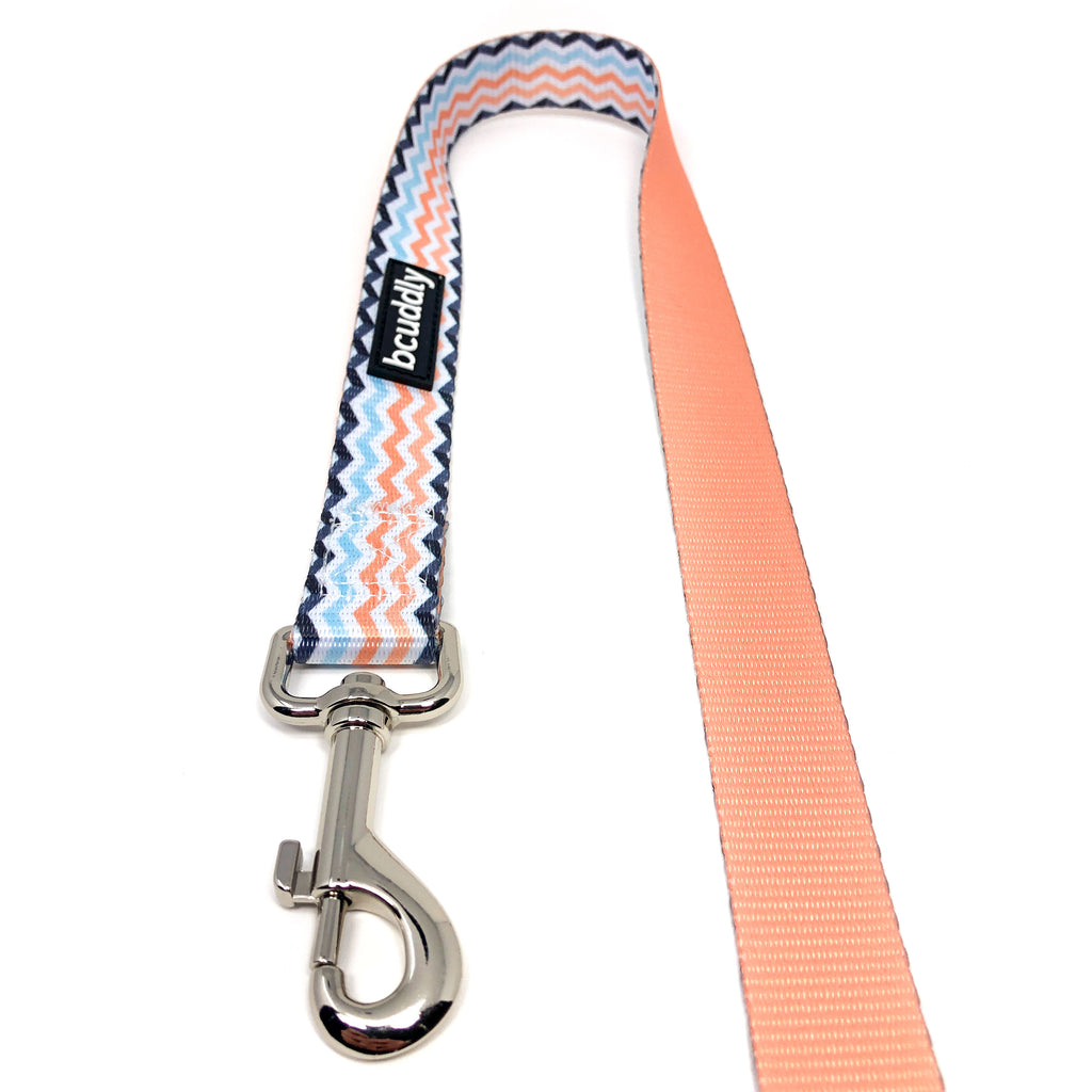 Dog Leash - Peach Wave (6ft)