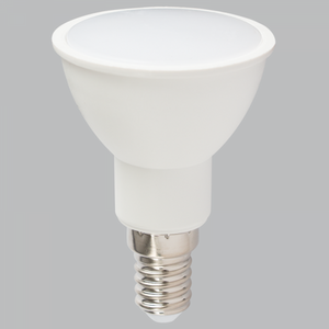 5W: E14 LED Bulb (screw)
