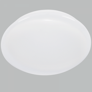 Polycarbonate Fitting LED Ceiling light