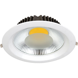 Flush Mount Downlight