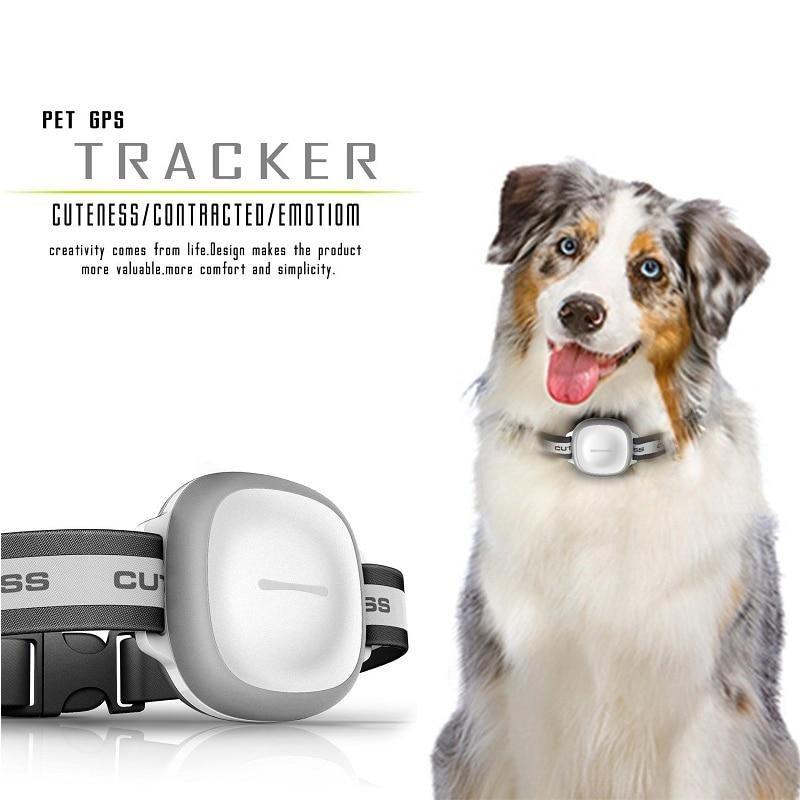Tracer for Pets Dogs Collar - Mini GPS Tracker Collar LED GPS Tracking Locator