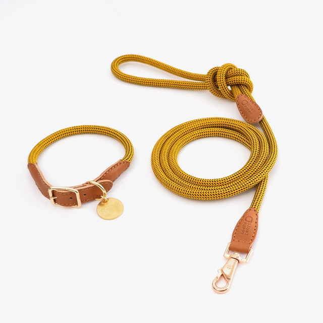 Multiple Colors Rope & Leather Cat & Dog Collar