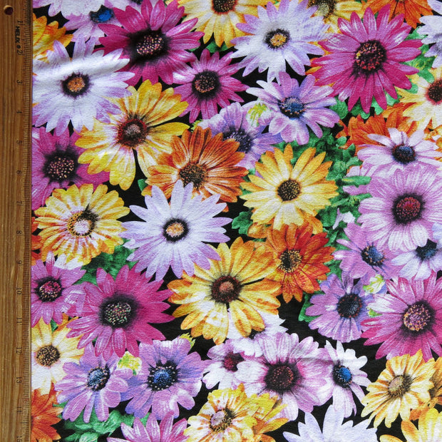 Daisy Party Floral Cotton Lycra Jersey Knit Fabric