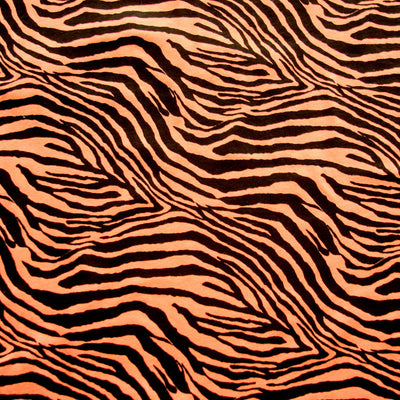 Black Zebra on Fluorescent Orange Knit Fabric