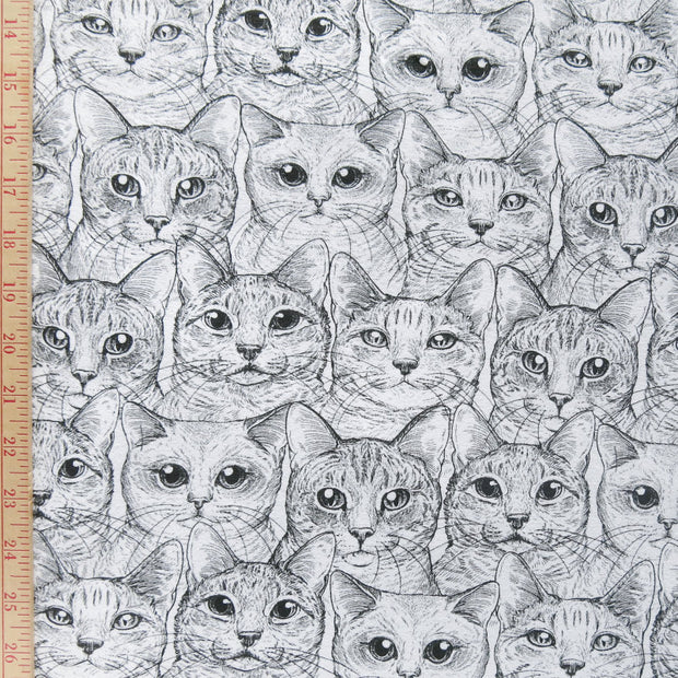 Contented Cats Cotton Lycra Jersey Knit Fabric