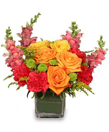 Rose delight - Anniversary Flower Arrangements, Flower, Florist, Print-a-Bunch Ottawa - Orleans Florist, Great for a Birthday and Anniversary