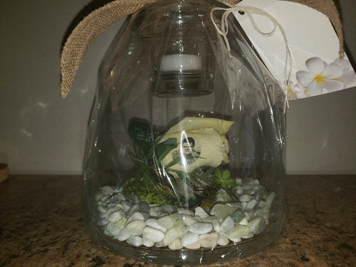 Resting Rose Dome - $49.99 Flower Arrangements, Flower, Florist, Print-a-Bunch Ottawa Florist,
