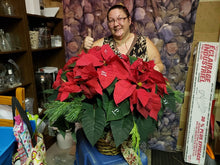 Load image into Gallery viewer, Red flashy Poinsettia business - from $33.34 Flower Arrangements, Flower, Florist, Print-a-Bunch Ottawa - Orleans Florist, Great for a Birthday and Anniversary