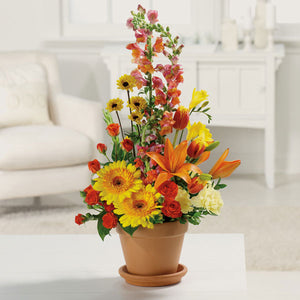Terra Cotta Treasures - Starting from $59.99 Flower Arrangements, Flower, Florist, Print-a-Bunch Ottawa Florist,