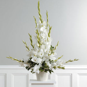Radiant Glads Arrangement - Starting $79.99 Flower Arrangements, Flower, Florist, Print-a-Bunch Ottawa - Orleans Florist, Great for a Birthday and Anniversary