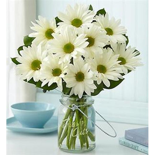 Room full of daisies - Anniversary Flower Arrangements, Flower, Florist, Print-a-Bunch Ottawa - Orleans Florist, Great for a Birthday and Anniversary