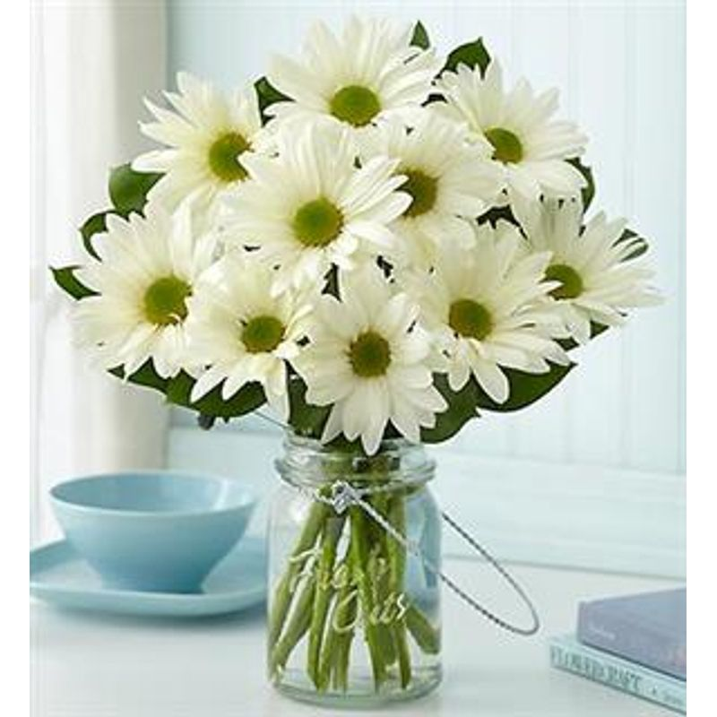 Room full of daisies - Starting from $24.99 Flower Arrangements, Flower, Florist, Print-a-Bunch Ottawa Florist,
