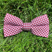 Load image into Gallery viewer, Close-up of Gadsden Garnet Gingham Bowentie.