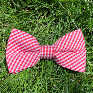 Close-up of Rutledge Red Gingham Bowentie.