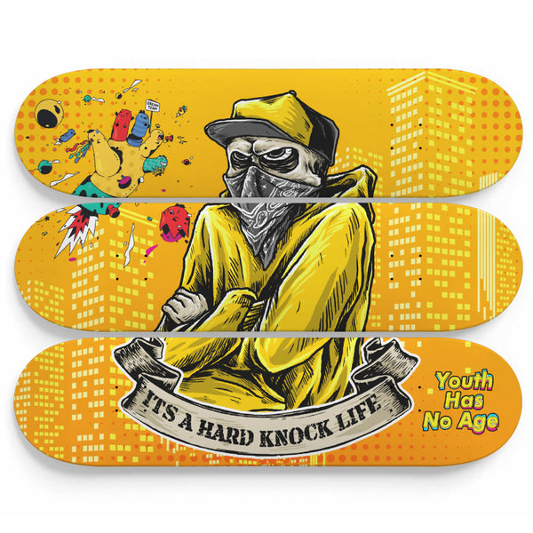 Hard Knock Life Skateboard Wall Art