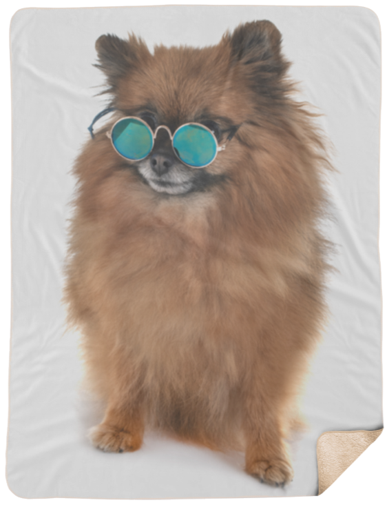 Cool Dude Pomeranian Dog With Glasses Extra Large Fleece Sherpa Blanket