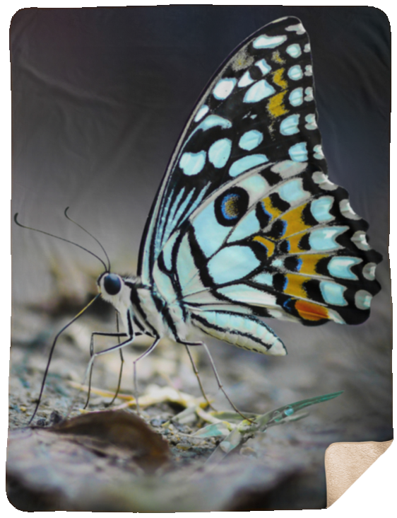 Beautiful Butterfly Extra Large Fleece Sherpa Blanket