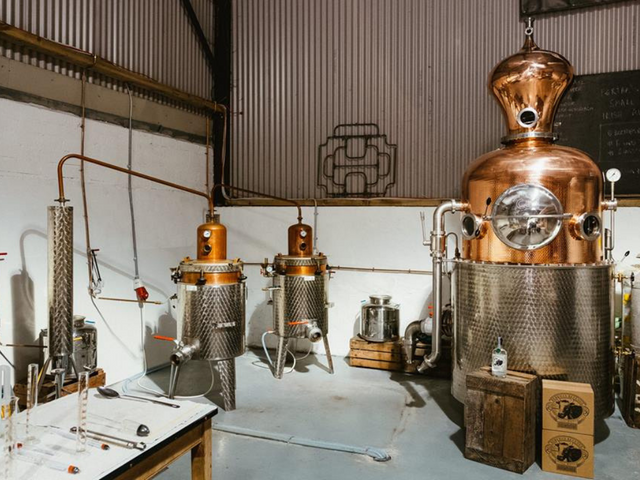 Gin Distillery Tour, Tasting and Lunch in Historic House - Cork