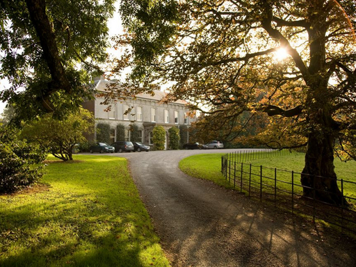 Foraging and Lunch in Historic House Estate - Cork