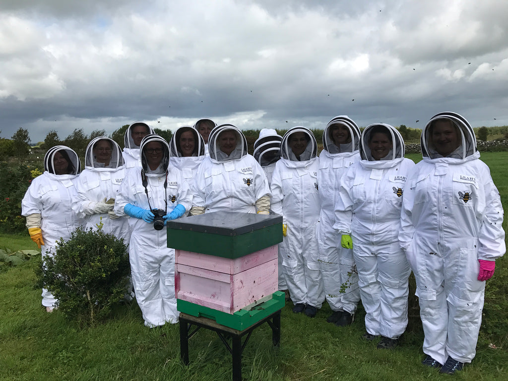 Hands-on Beekeeping Tour on Family Farm - Galway