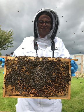 Hands-on Beekeeping Tour on Family Farm