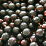 Mr Jeffares Blackcurrants - Blackcurrants Punnet (12 x 500g Punnets)
