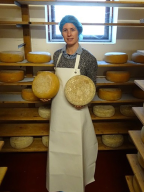 Cheesemaking Tour & Tasting with Irish Soda Bread - Galway