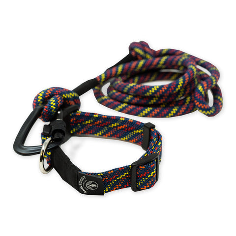 Pure Fury Collar and Leash Set