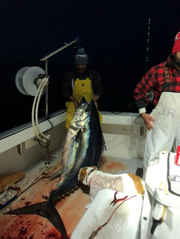 Big Eye Tuna Fishing