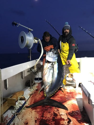 Big Eye Tuna Catch