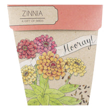 Load image into Gallery viewer, Hooray Zinnia Gift of Seeds