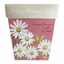 Load image into Gallery viewer, Chrysanthemum Mothers Day Gift of Seeds