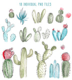 WATERCOLOR CACTUS CLIPART, commercial use, digital watercolor, succulent clipart, watercolor succulents, cacti, floral design elements