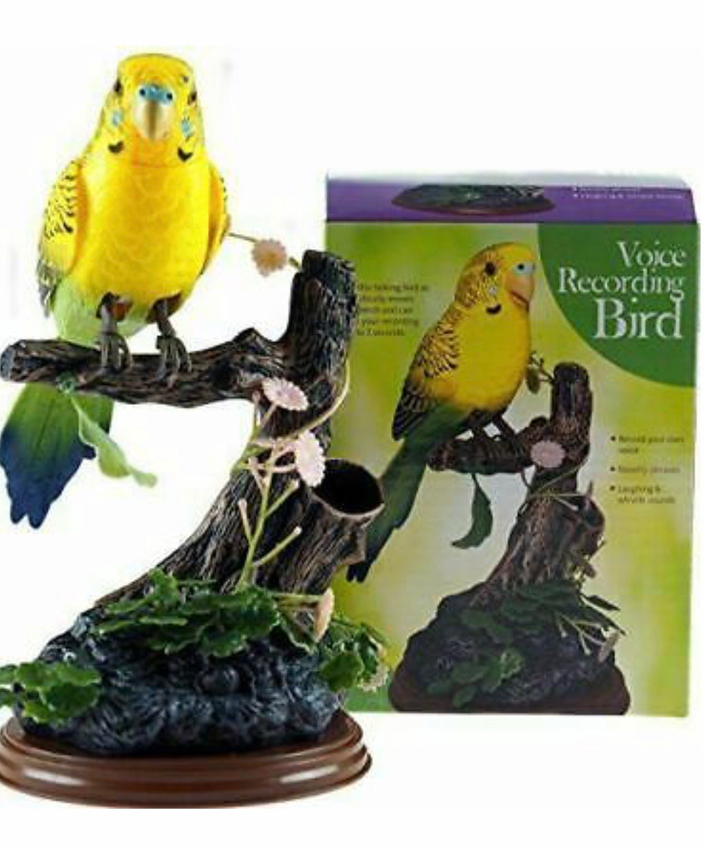 Talk Back Voice Recording Parrot Bird - Novelty Gift