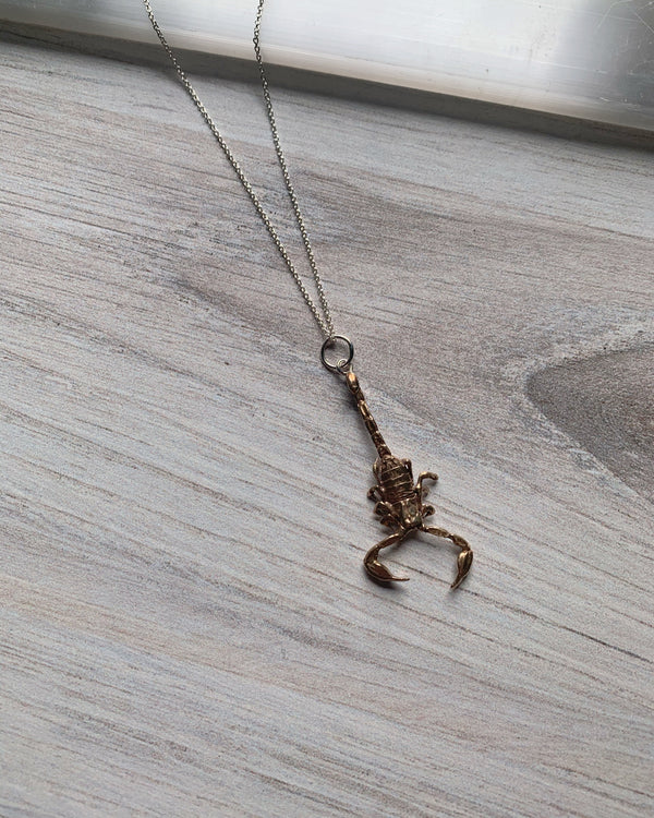 • SCORPION •  bronze + silver necklace