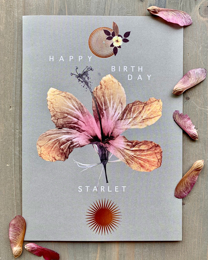 • BIRTHDAY STARLET • luxe note card