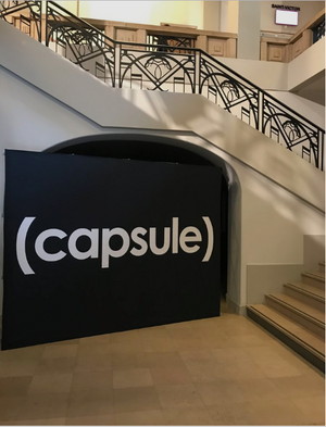 CAPSULE, PARIS. JUNE 24 - 26TH, 2017