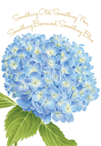 Hydrangea Wedding Card