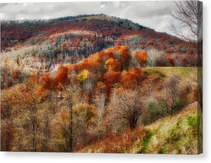Cataloochee Fall - Canvas Print