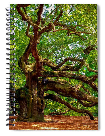 Charleston's Mighty Angel Oak - Spiral Notebook