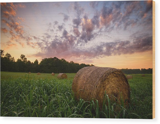 Country Sunrise - Wood Print