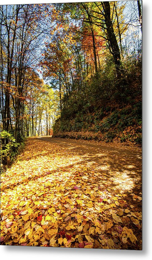 Fall In Cataloochee - Metal Print