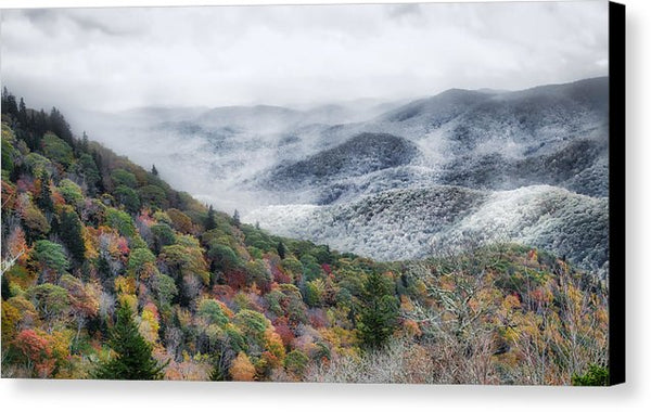 Winter Creeps In - Canvas Print