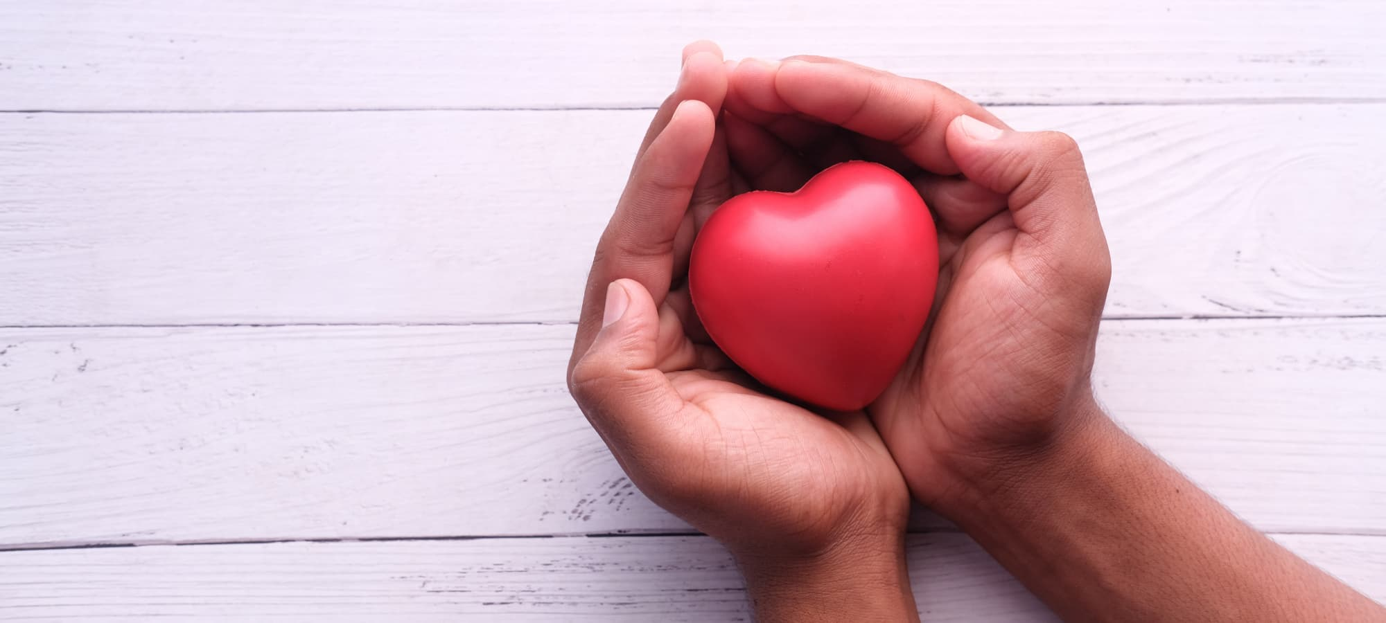 cupped hands holding a model of a heart