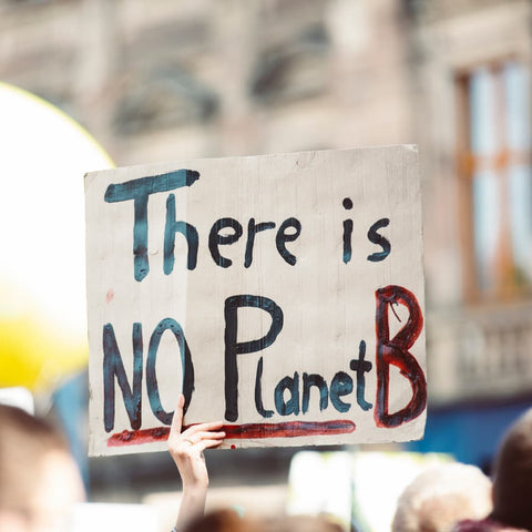 """a protest sign reading """"there is no planet b"""""""