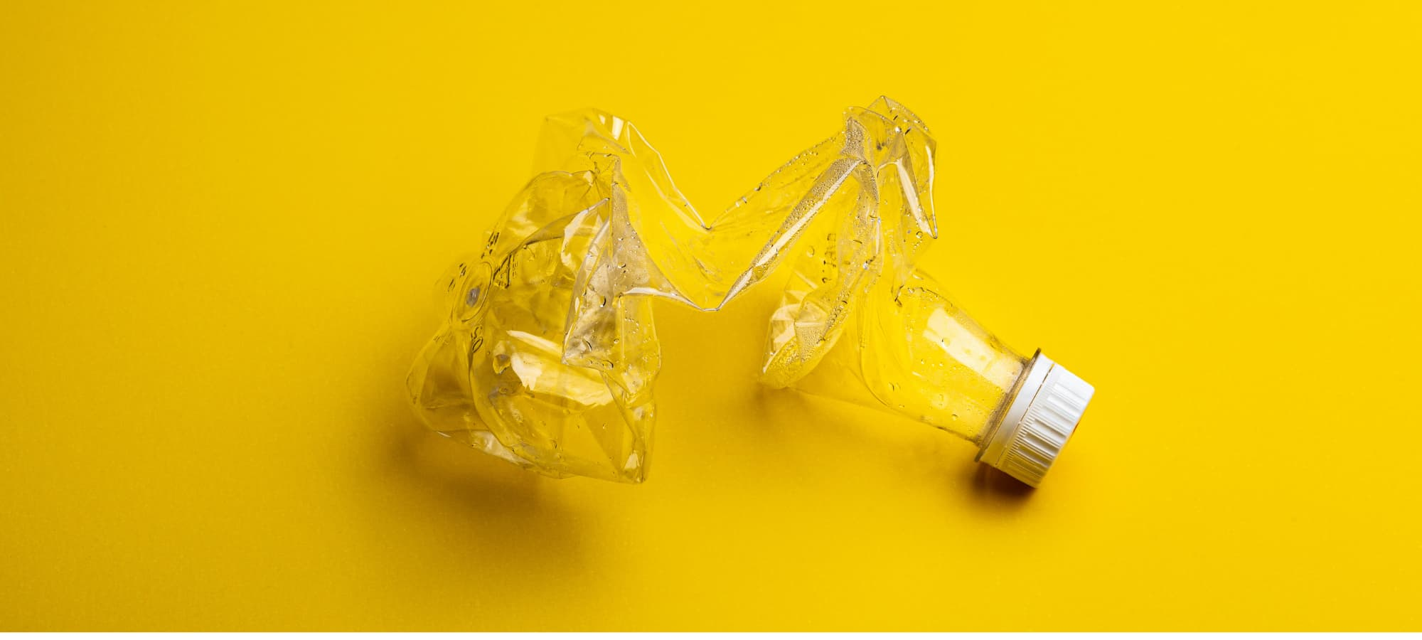 a crumbled plastic bottle against a yellow background